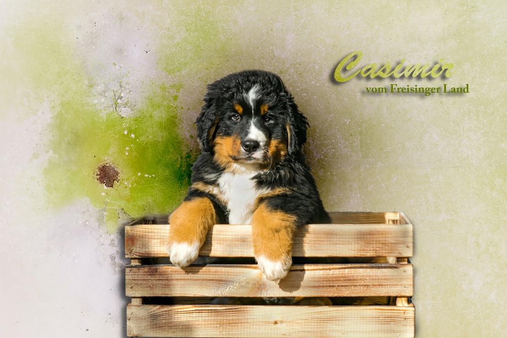 1_comp_Casimir_vomFreisingerLand
