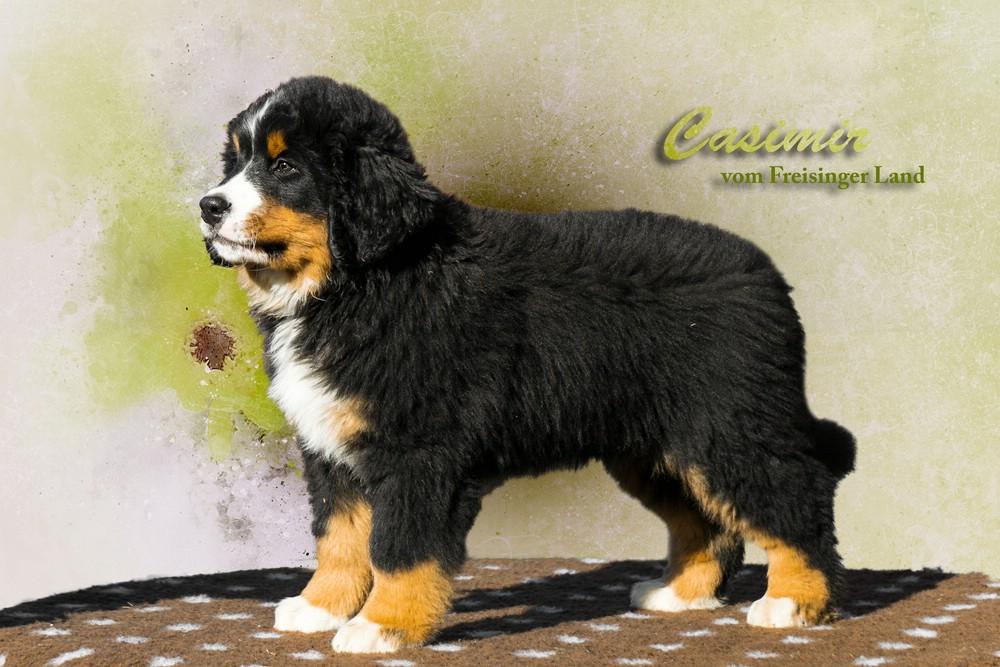 comp_Casimir_vomFreisingerLand2
